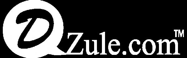 Dzule Seo Speed - Công Cụ Kiểm Tra Tối Ưu hóa công cụ tìm kiếm Website